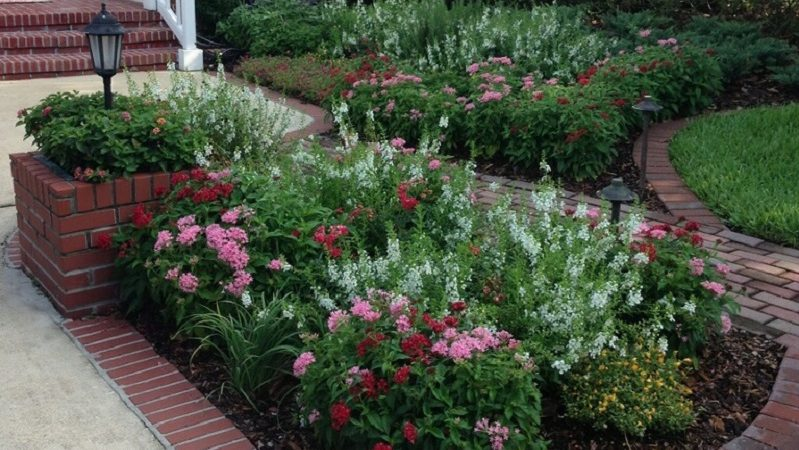 K. M. Mease Landscape Designs – Jacksonville Landscape Design and ...